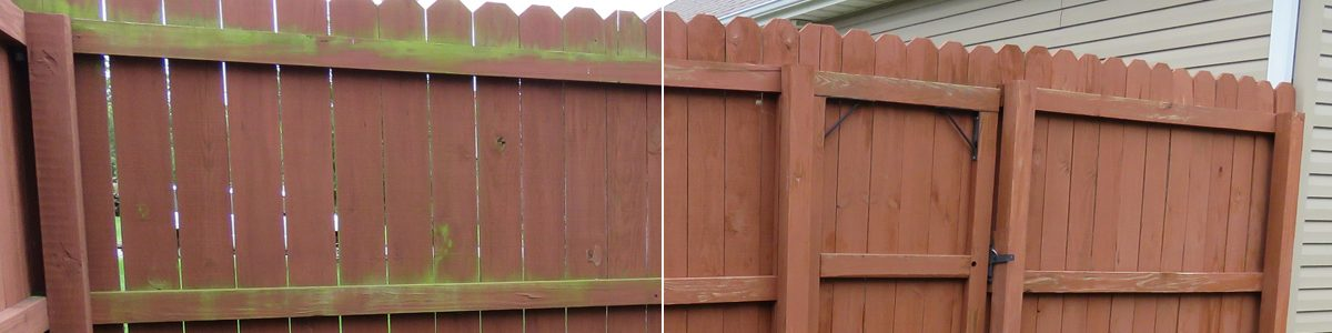 wood-fence-cleaning-company